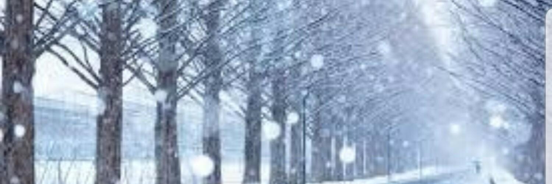 「頭文字D ARCADE STAGE Zero」Dフェス 第39回弥生会杯 秋名雪上り 18、19土日開催! 画像