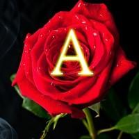 ✨Armeria(アルメリア)✨