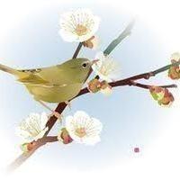 BW〜bush warbler〜