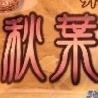秋葉原プレーヤーの会