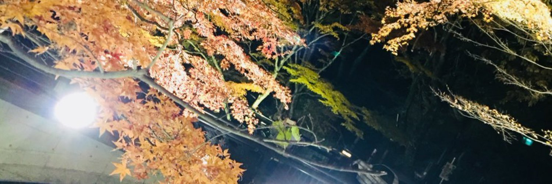Ryusei1208922