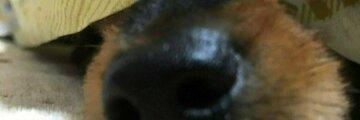 Thumb 75f163ae 04d0 46a1 9621 5f946cc669aa