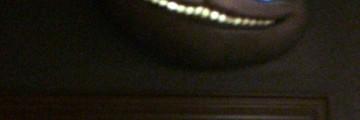 Thumb 5ed246ac 4321 4f1c 9168 8fe98dbe941a