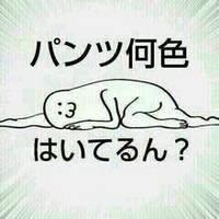 眠烏(すやがらす)
