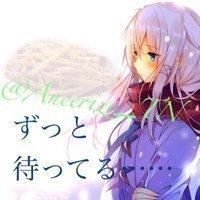 Ancerize_TN