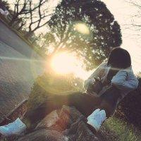 cham_iris