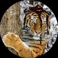 TomSmith_TRPG