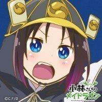 shogun_mbp