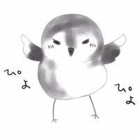 se_shiki