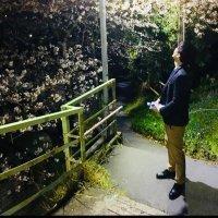 wai_san_