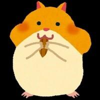キメセクメスイキハメ太郎🐹
