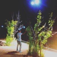 fuku_shin_1228