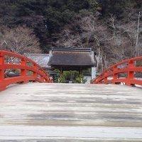 yoshi0926taka