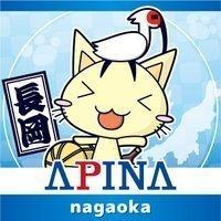 apinana_nagaoka