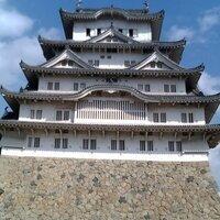 kinako_SM@footista