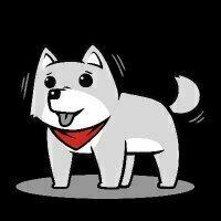 迷い込んだ犬