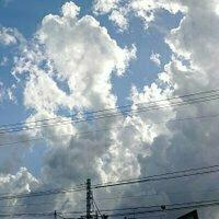 aki_zero_kcal