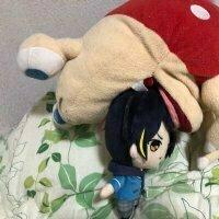 shiro_to4649
