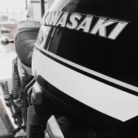 mako_drispi