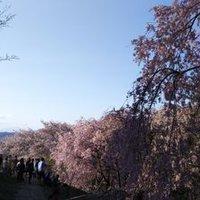 Kento_Ueda