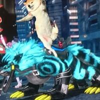 ベンチプレス松本犬