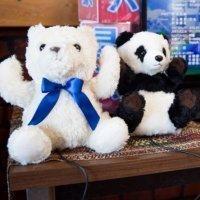 Tsushima_panda