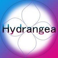 Hydrangea_CM